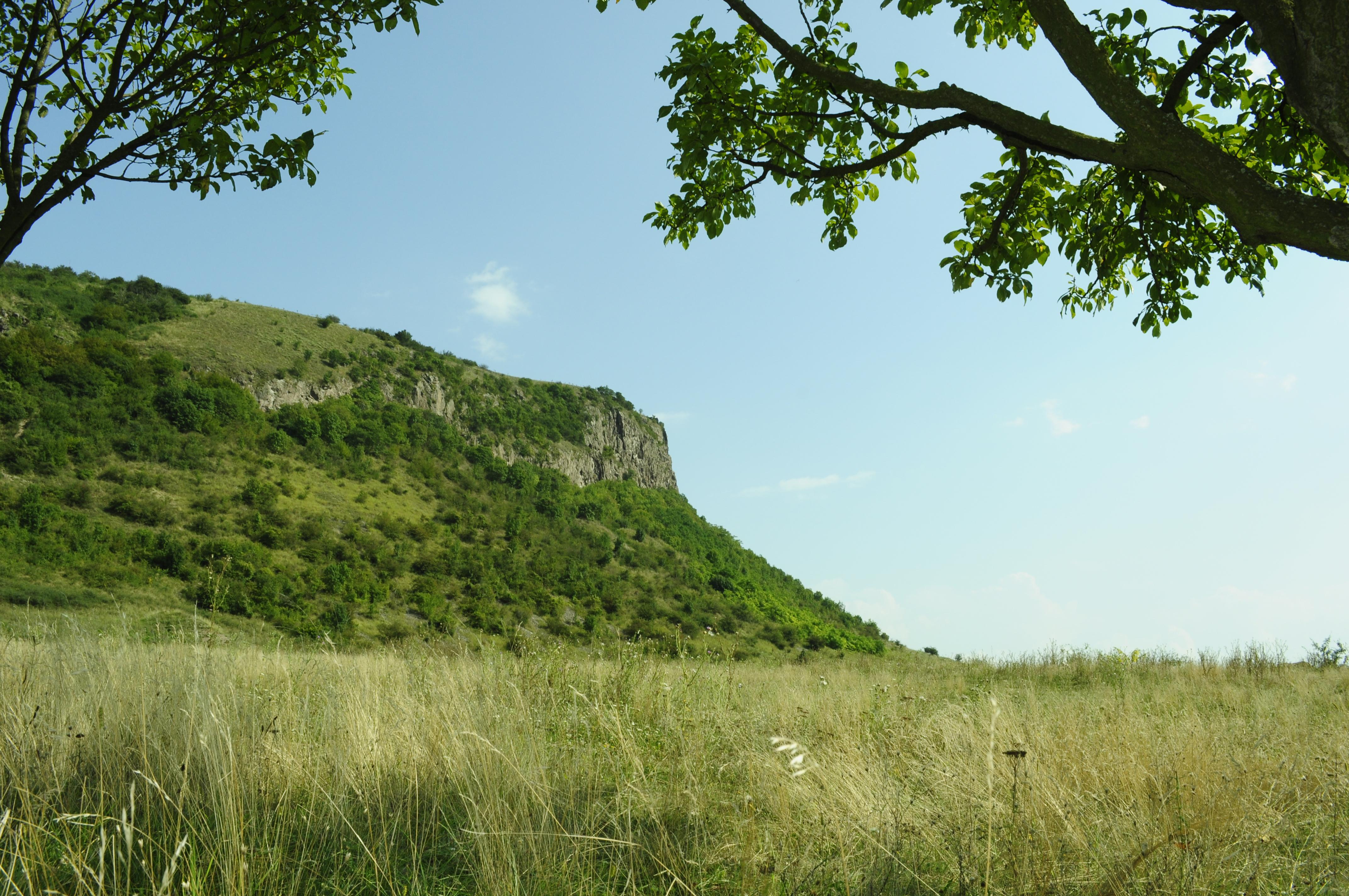 Proiectul de Regulament al ariilor naturale protejate ROSPA0139 Piemontul Munților Metaliferi-Vințu (împreună cu 2.519 Măgura Uroiului) și ROSCI0419 Mureșul Mijlociu-Cugir
