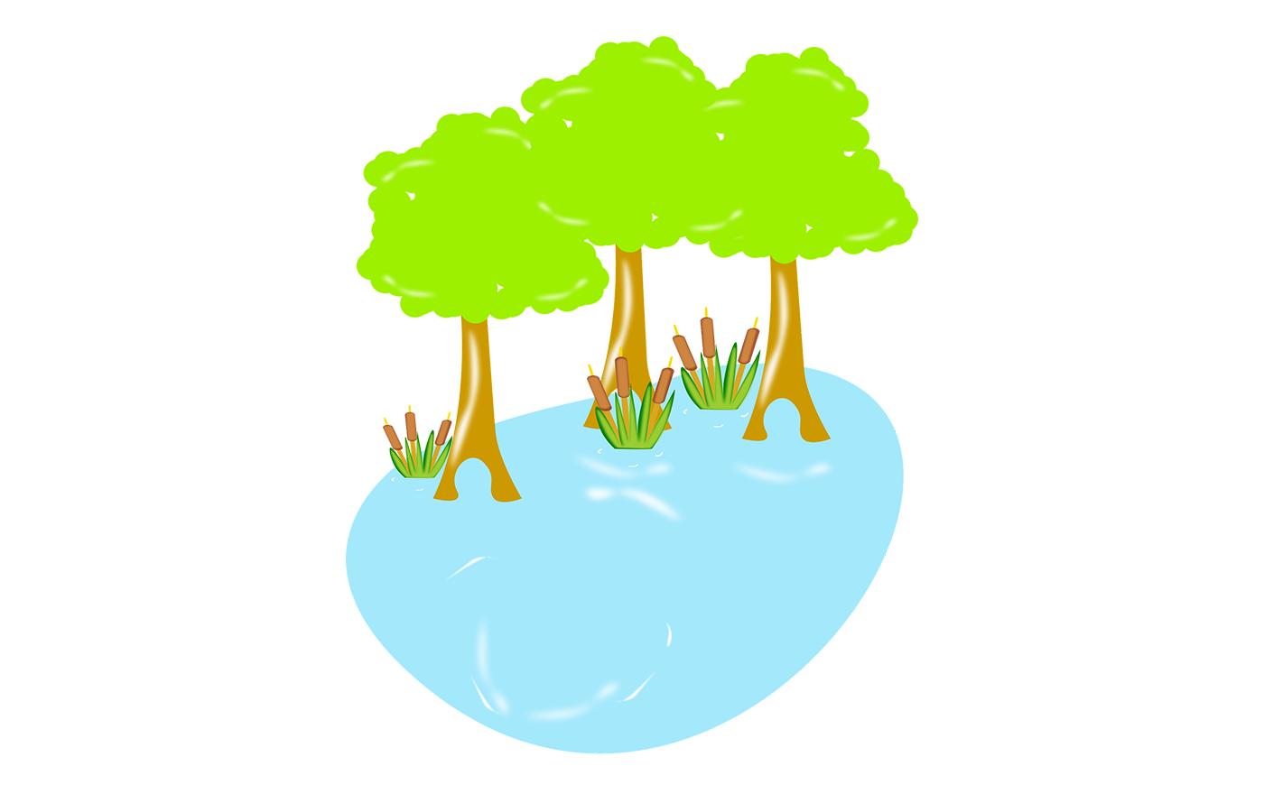 Finanțări RO-Mediu - Restaurare zone umede și turbării